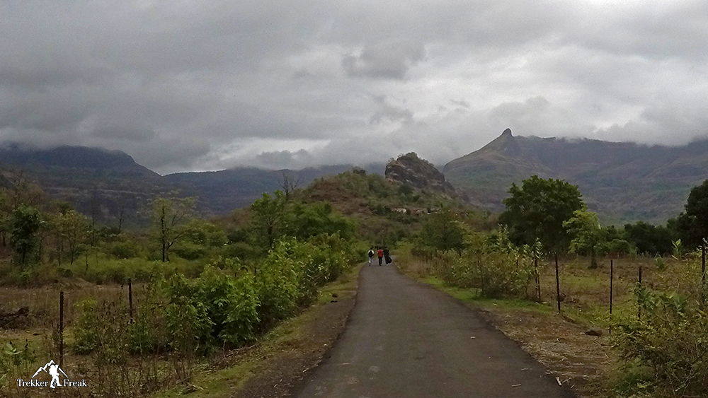 road-to-bheliv-village