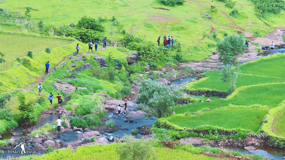small-water-stream-diksal-waterfall